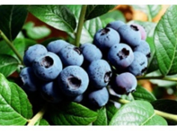 Blueberry Lime Jam In Bread Machine Recipe