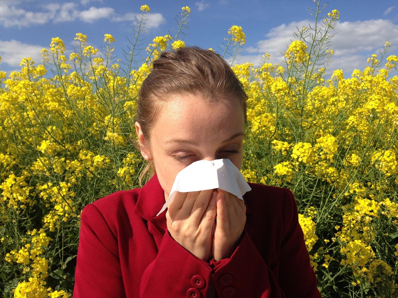 daily-mom-parent-portal-spring-allergies