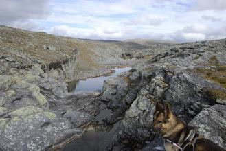 Kuva: Toskalpuron latvoilla, oli niin kuivaa, että vedet eivät virranneet