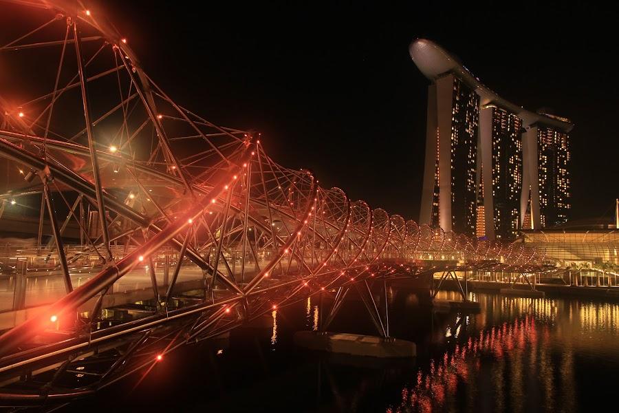Double Helix @ Singapore by Wisnu Widiarta - Buildings & Architecture Bridges & Suspended Structures ( bridge, singapore )