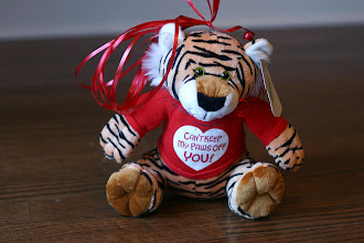 Photo: Tiger-Can't keep my paws off you!