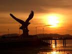 【Sunset Pheonix】