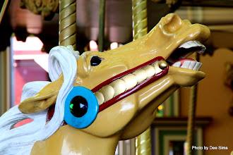 Photo: (Year 3) Day 25 - The Wonderful Carousel #2