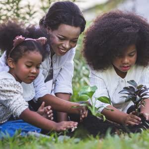 Bestsellers In Garden & Outdoors
