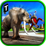 Angry Elephant Attack 3D Icon