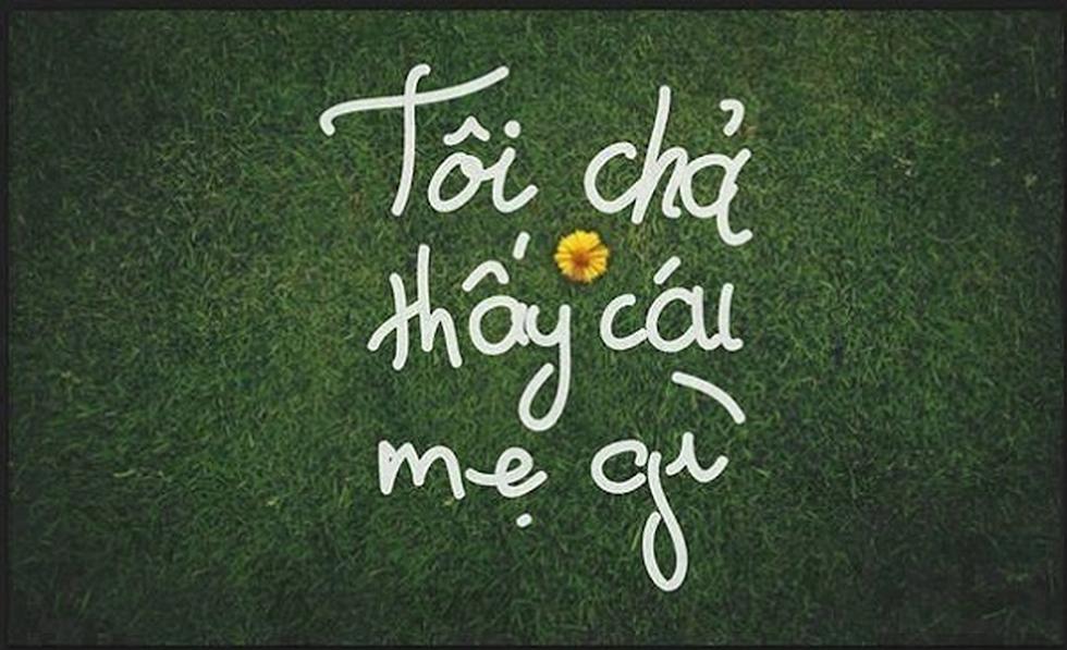ảnh chế Tôi thấy hoa vàng trên cỏ xanh