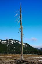 Photo: Spark Lake, Deschutes National Forest