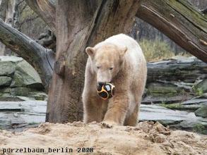 Photo: Der Ball wird auf den Sandhaufen transportiert ;-)
