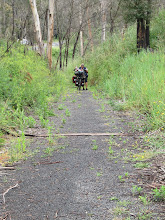 Photo: Year 2 Day 160 - Off and Walking Up a Hill on the Rail Trail