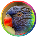 Best Bird Sounds And Ringtones icon