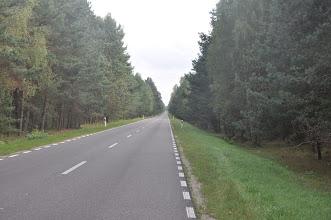 Photo: Ładny leśny odcinek w drodze na Polesie