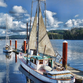 Ready to Sail by Christy Sawyer - Transportation Boats ( oregon, marina, boat )