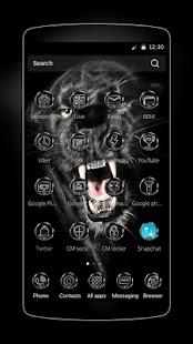 Burácejících Fury Panthers - náhled