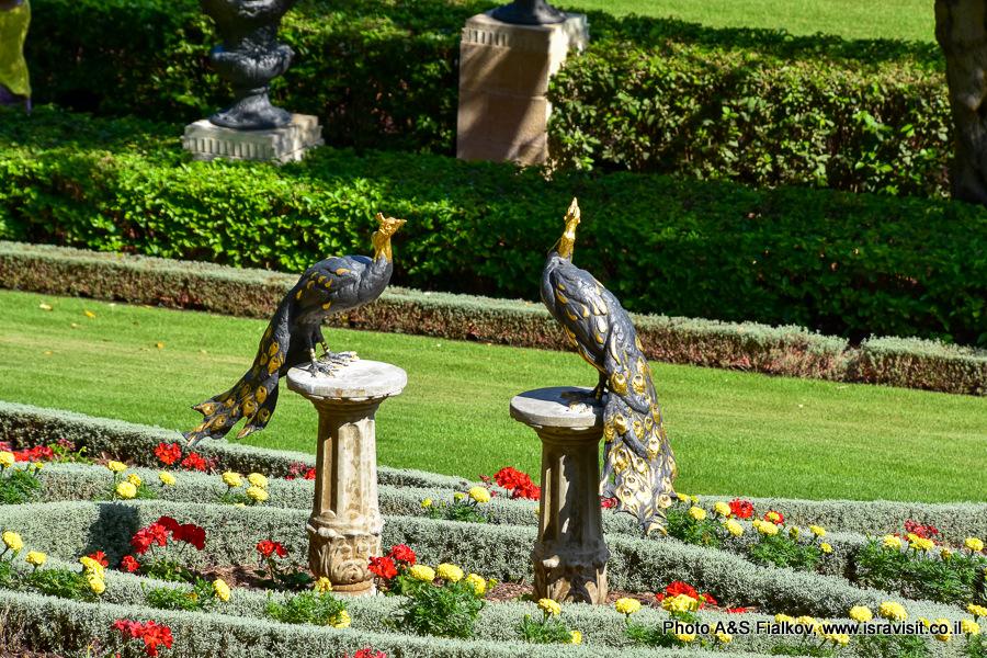 Бахайские сады, экскурсия по Хайфе