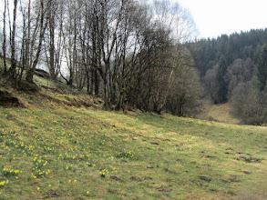 Photo: De vallei van de Schwalmbach ten noorden van het militair domein van Elsenborn