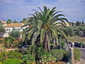 Photo: 2009-09-21. Mathraki Resort.  www.loki-travels.eu