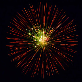 Starburst by Michelle Bergeson - Public Holidays July 4th ( holiday, red, green, fireworks, night,  )