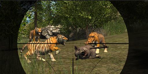 Wild Tiger Hunter 2015