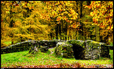 Photo: geheime Räume, vermauerte Gänge und dunkle Verliese im Park http://goo.gl/ITvFrA