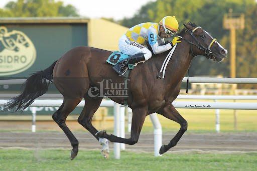 Moraviano (Portal Del Alto) se quedó con la victoria en el Clásico Asoc. Argentina De Fomento Equino (1200m-Pasto-SI).