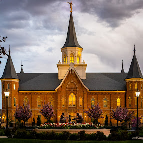 Provo City Center Temple  by Dan Bartlett - Buildings & Architecture Places of Worship ( utah, church, temple, provo, gospel, lds, provo city center temple, mormon, worship,  )