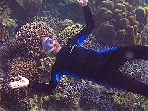 Photo: snorkeling the reefs of the national marine park