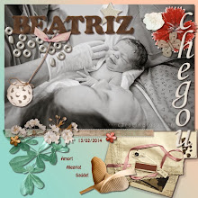Photo: Welcome Kit by GDS Frame, alpha, cluster, birds - Little Baby Bunting by Aja Abney Photo by Caroline Rosa Font Hobo Std PS CS5