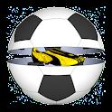 Football Goal Game 2016 icon