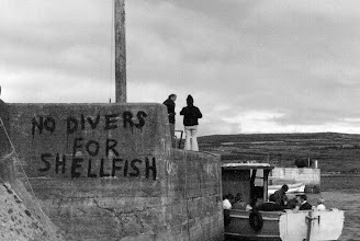Photo: Portmagee Harbour, a sign of the times!