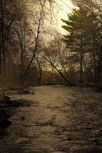 Photo: Rain approaching Assabet River in Northborough, MA  #365project curated by +Susan Porter and +Simon Kitcher