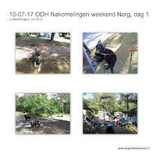 Photo: De eerste dag in Norg op de camping met Atuniël-Khes, Channiël-Sifra en Dumah-Dumaj (en Branco, Angel, Aiki & Boy)