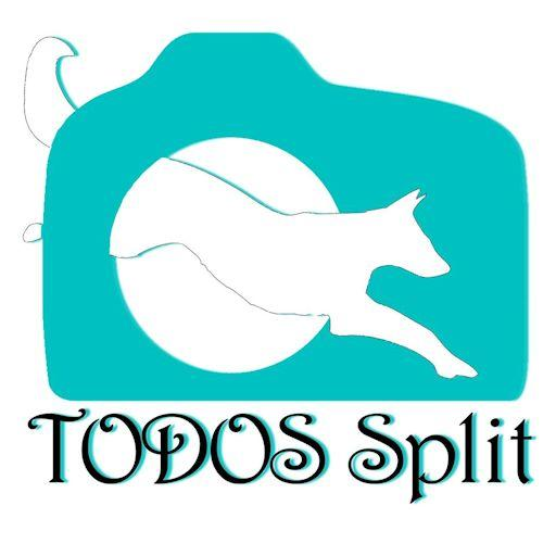 Todos Split: prva pomoć za pse