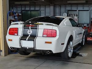マスタング クーペ  GT Californiaspecialのカスタム事例画像 T さんの2020年05月30日13:23の投稿