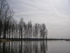"""Photo: koniec sobkowskiego """"lasu"""""""
