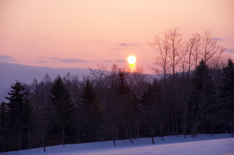 オレンジ色の朝陽