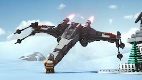 Flight of the Falcon thumbnail