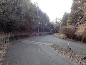林道で下山(右へ)