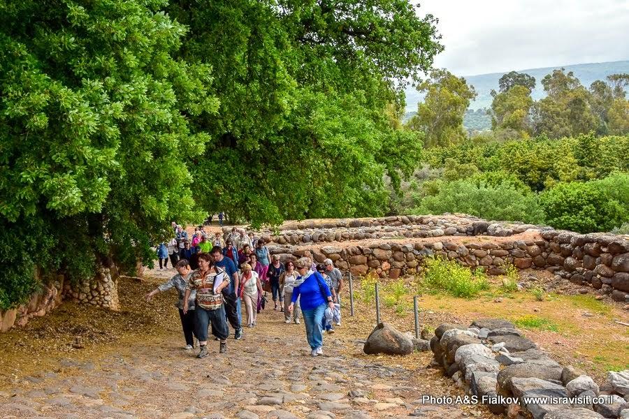Экскурсия в Израиле в национальном парке Тель Дан.