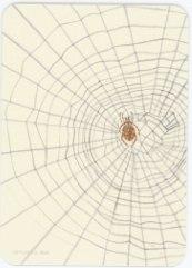 Карта из колоды метафорических карт Ресилио: паутина