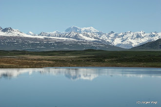 Photo: Denali Highway. 50 Mile Lake