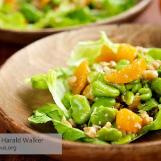 Fava Bean, Walnut and Orange Salad