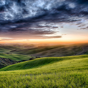 Sunset in Tuscany by Maurizio Martini - Landscapes Mountains & Hills ( countryside, hills, tuscany, italian, seasonal, silhouette, yellow, travel, sky, nature, tree, autumn, light, hill, orange, grass, agriculture, horizon, forest, sunlight, rural, country, environment, season, scene, view, plant, beauty, landscape, panorama, sun, farm, hillside, evening, italy, clouds, green, beautiful, scenic, field, fog, sunset, fall, background, outdoor, peace, meadow, summer, scenery, sunrise )