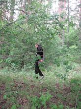 Photo: … a zdjęty odrazą profesor Mioduchowski na samotny spacer.
