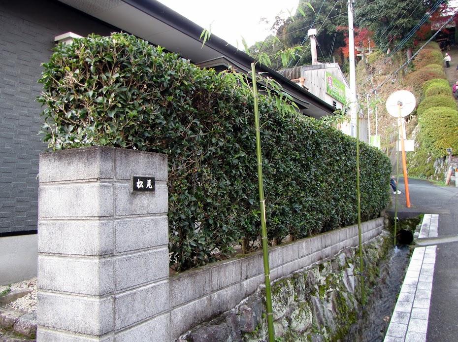 農舍 水泥圍牆 與 綠籬圍牆 選擇