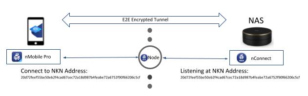 Figure 2: NKN Address used to establish E2E encryption