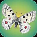 Tagaktive Schmetterlinge icon
