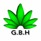 G B H Chat - Green Buds Hydroponics Chat App Android apk