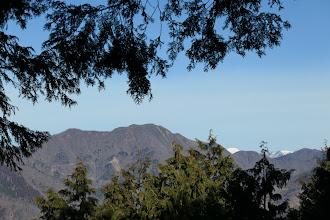 雪の無い花房山と右に白い能郷白山