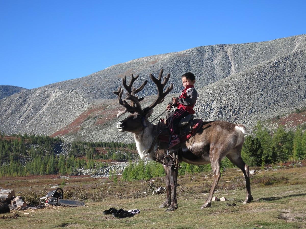 Ankha sur un renne