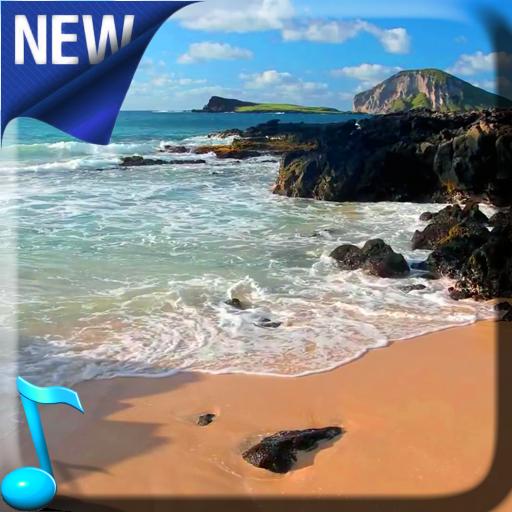 Relax Video Live Wallpaper Google Play Də Tətbiqlər